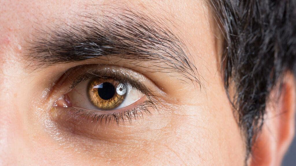 Unsere Behandlungsschwerpunkte in der Augenheilkunde: